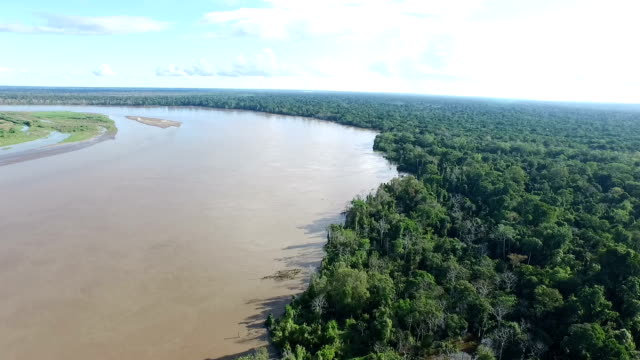 aerial view of peruvian amazon and jungle - amazonas state brazil stock videos and b-roll footage