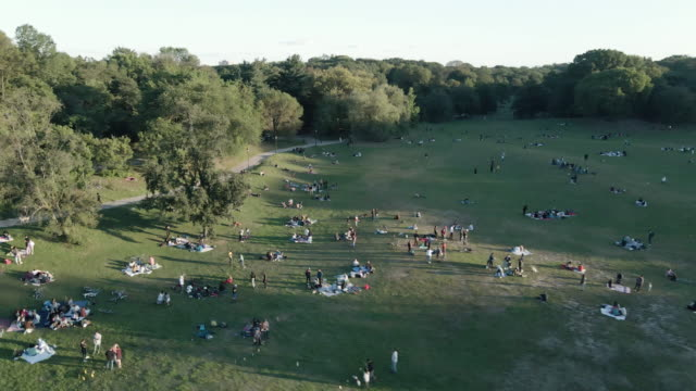 aerial view of picnic goers in brooklyn's prospect park at sunset - picnic stock videos & royalty-free footage