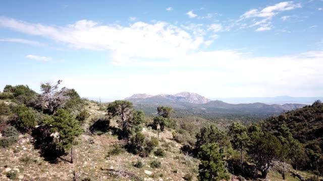 aerial view of pine tree forest and mountains of prescott arizona - prescott arizona stock videos & royalty-free footage
