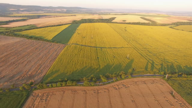 aerial view of plowed fields - monoculture stock videos & royalty-free footage