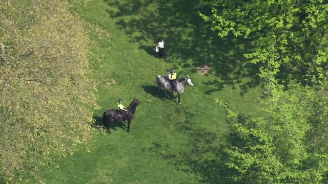 aerial view of police enforcing social distancing rules in a park during the coronavirus crisis - horse stock videos & royalty-free footage