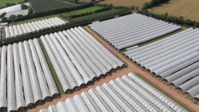 Aerial view of polytunnels