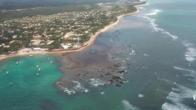 vídeos de stock, filmes e b-roll de vista aérea da praia do forte, bahia, brasil - árvore tropical