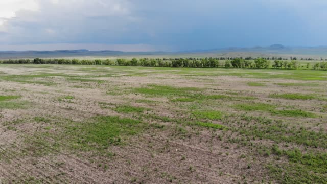 aerial view of prairie and fields - prairie stock videos & royalty-free footage