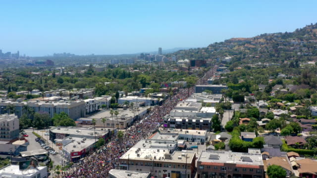 aerial view of protest in hollywood - anti racism stock videos & royalty-free footage