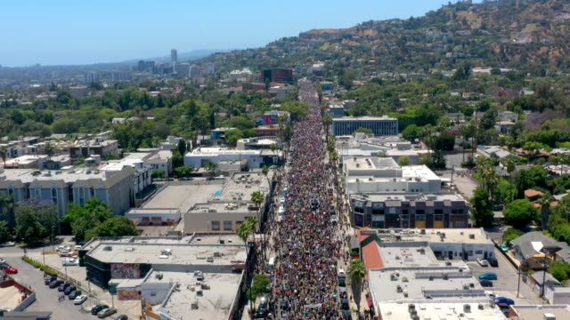 aerial view of protest in hollywood - los angeles police department stock videos & royalty-free footage