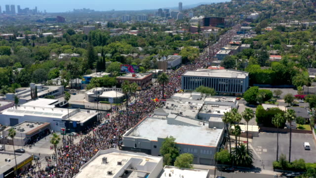 aerial view of protest in hollywood - george floyd stock videos & royalty-free footage