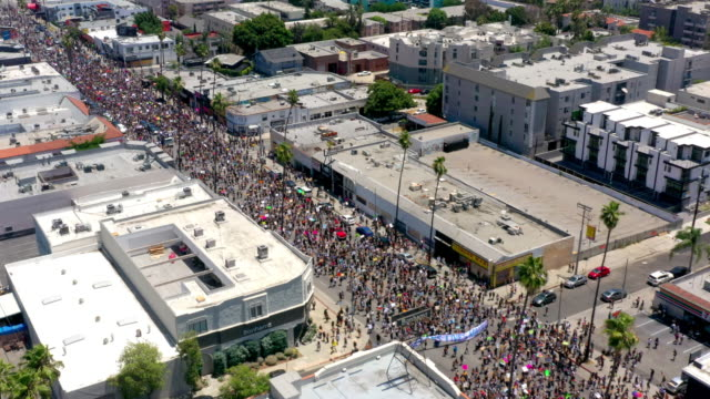 aerial view of protest in hollywood - hollywood california stock videos & royalty-free footage