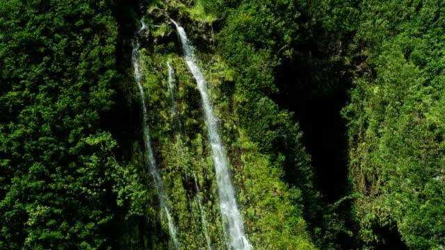 vídeos de stock e filmes b-roll de aerial view of rainforest tropical environment valley maui - povo polinésio