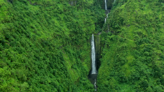 aerial view of rainforest valley waterfalls on maui - 谷点の映像素材/bロール