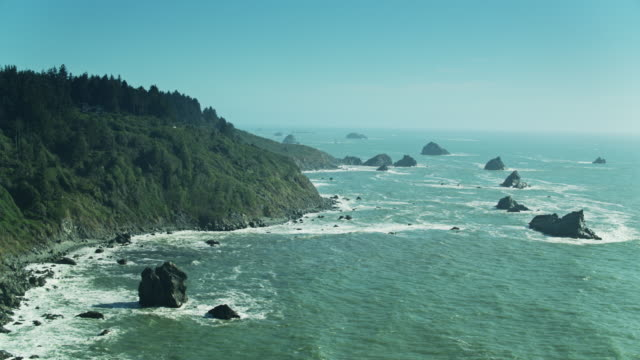 aerial view of redwood forests above pacific cliffs - pacific coast stock videos & royalty-free footage