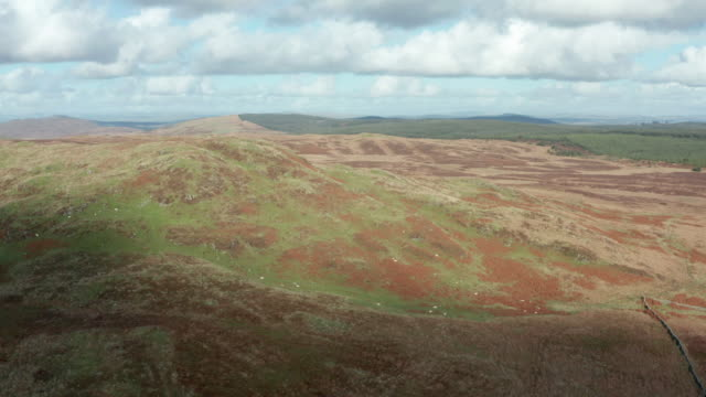 aerial view of remote scottish countryside in dumfries and galloway - galloway scotland stock videos & royalty-free footage