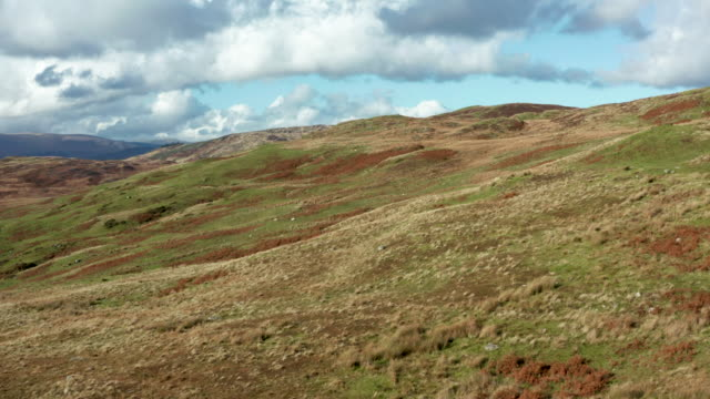 aerial view of remote scottish countryside in dumfries and galloway - heather stock videos & royalty-free footage