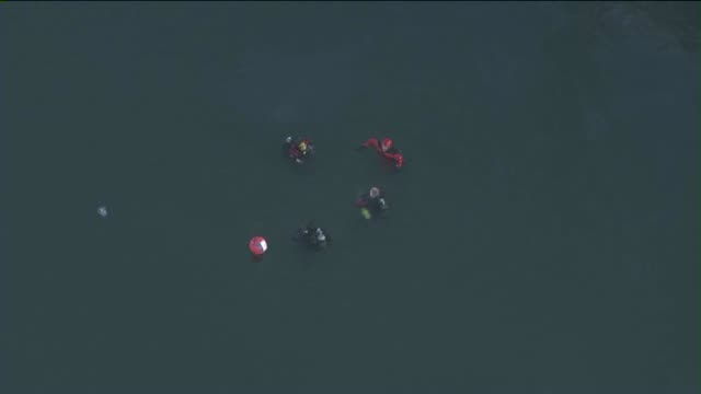vídeos y material grabado en eventos de stock de aerial view of rescue divers at the port of los angeles. one child died and a second remained hospitalized in grave condition on april 9, 2015 after... - puerto de los angeles