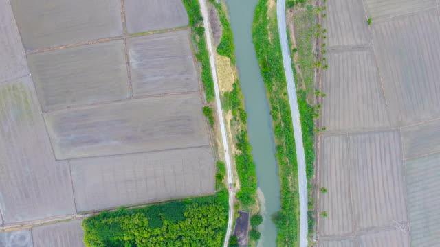 Luftbild von Reisfeld und Wasserlauf im ländlichen Raum