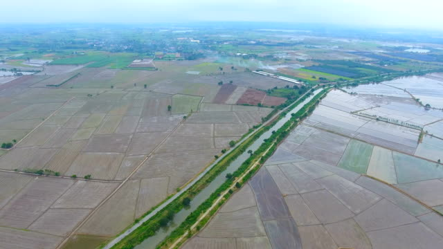 aerial view of rice paddy and watercourse in rural area - irrigation equipment stock videos & royalty-free footage