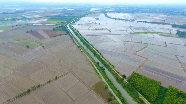 Luftaufnahme von Reisfeld bedeckt mit Wasser und Gewässer im ländlichen Raum