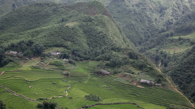 aerial view of ricefields landscape in sa pa, vietnam - sa pa stock videos and b-roll footage