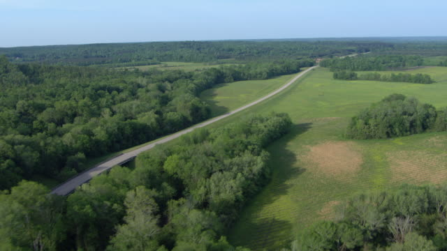 aerial view of river along natchez trace parkway in rural allsboro, alabama, united states of america - aircraft point of view stock videos & royalty-free footage
