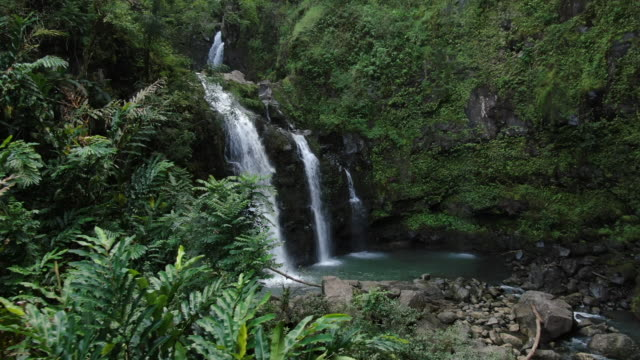 aerial view of river and waterfall in forest jungle - isole del pacifico video stock e b–roll