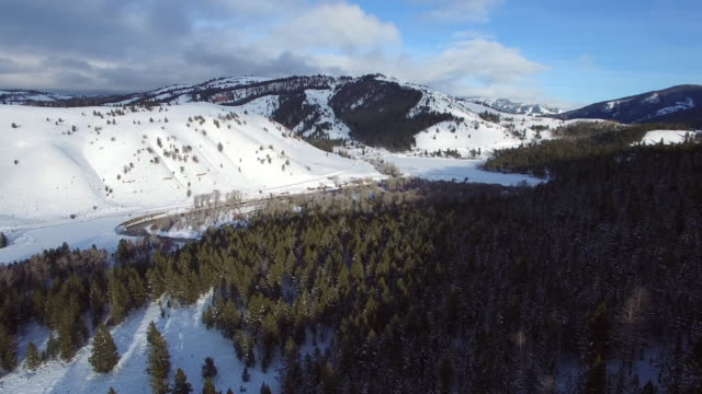 aerial view of river by evergreen trees with snow and mountains, drone moving forward over forest against sky during winter - jackson, wyoming - snowcapped mountain stock videos & royalty-free footage