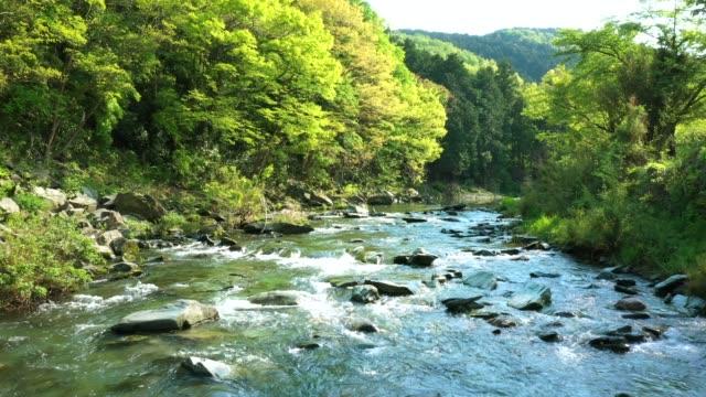 vidéos et rushes de aerial view of river flowing in the mountains - vallée
