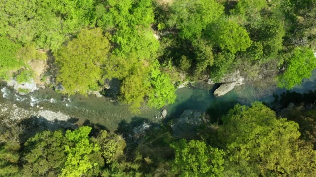aerial view of river flowing in the mountains - 谷点の映像素材/bロール