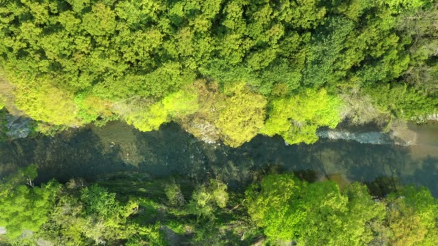 aerial view of river flowing in the mountains - valley stock videos & royalty-free footage