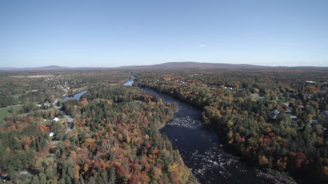 Aerial View of River in Forest Nature, Quebec, Canada
