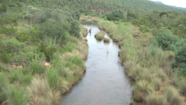 Aerial view of river with man fly fishing in Waterberg Biosphere