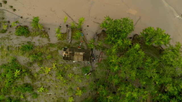 aerial view of riverside building amongst trees, brazil - soil stock videos & royalty-free footage