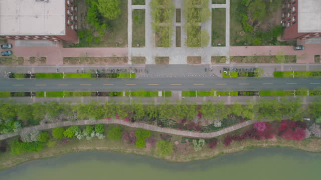 aerial view of road along the river in summer - liyao xie stock videos & royalty-free footage