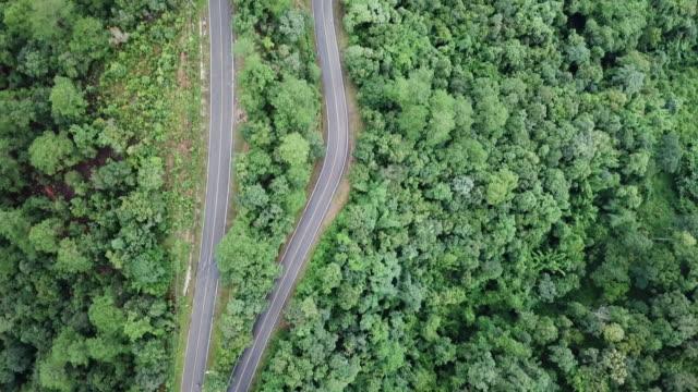 vídeos y material grabado en eventos de stock de vista aérea del camino en el bosque y cruce de conducción de automóviles - vía principal