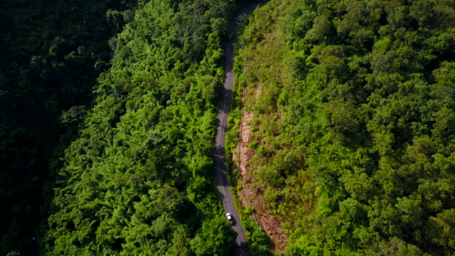 aerial view of road in the forest - trat province stock videos and b-roll footage