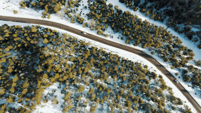 aerial view of road in winter - pinaceae stock videos & royalty-free footage