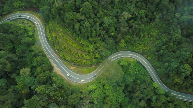 aerial view of road trip in forest to cameron highland, brinchang, malaysia - thoroughfare stock videos & royalty-free footage