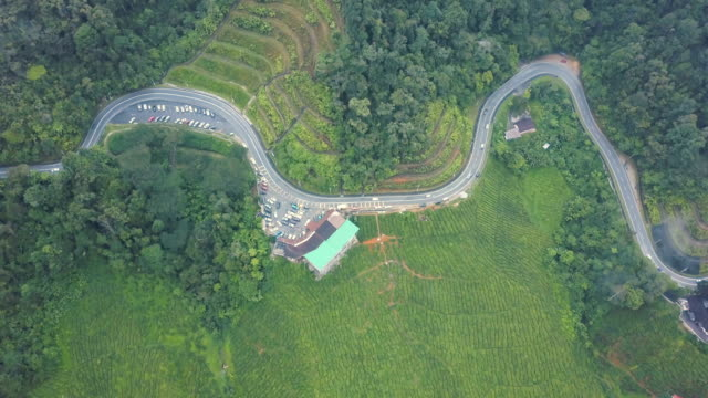 Aerial view of road trip in forest to cameron highland, Brinchang, Malaysia