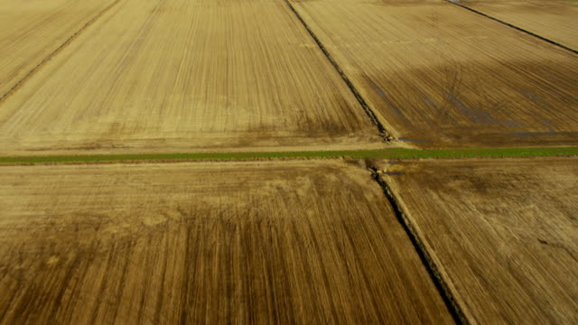 aerial view of rural agriculture farmland northern california - rice plant stock videos and b-roll footage