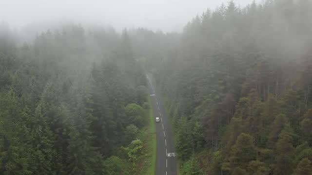 vídeos de stock e filmes b-roll de aerial view of rural road traversing forested area - estrada secundária