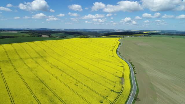Aerial view of rural road with oilseed rape field, springtime. Saale-Orla-Kreis, Thuringia, Schleiz, Germany.