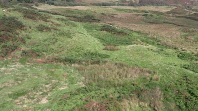 vídeos y material grabado en eventos de stock de vista aérea de la escocia rural en verano - johnfscott
