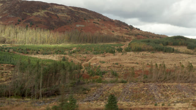 aerial view of rural scotland - johnfscott stock videos & royalty-free footage