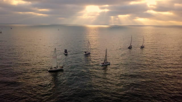 aerial view of sailboats in the ocean - wassersport stock-videos und b-roll-filmmaterial