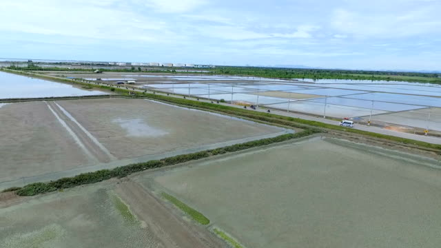 aerial view of salt farming naklua in the coastal, thailand - non us location stock videos & royalty-free footage