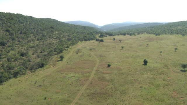 aerial view of savanna in waterberg biosphere - plain stock videos & royalty-free footage