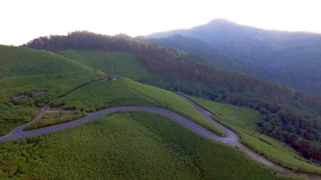 vídeos y material grabado en eventos de stock de vista aérea de la ruta escénica entre girasol mexicano con sol de mañana, provincia de mae hong son, tailandia - crisantemo