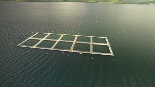 Aerial view of Scotland, Isle of Mull, fish farms, Sound of Mull or Lynn of Lorne, Scotland, North Atlantic Ocean