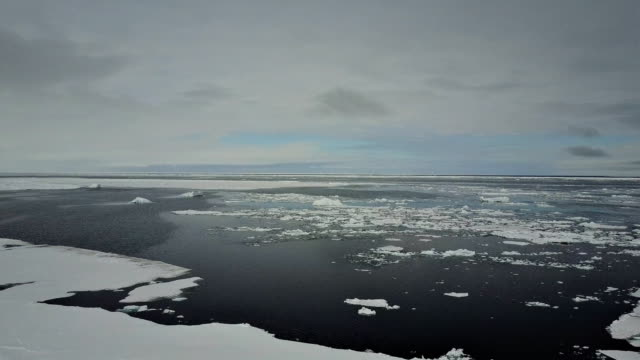 stockvideo's en b-roll-footage met aerial view of sea ice and the ice floe edge, admiralty inlet, northern baffin island, canada. - noordelijke grote oceaan