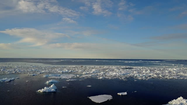 stockvideo's en b-roll-footage met aerial view of sea ice on a sunny day, admiralty inlet, baffin island, canada. - noordelijke grote oceaan