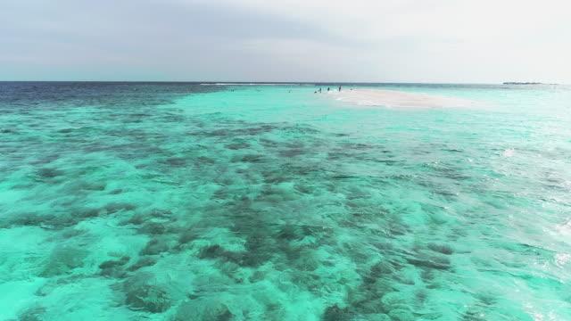 luftaufnahme des strandes am meer. video von schönheit naturlandschaft mit tropischen strand. top-ansicht luftbild von schönheit naturlandschaft mit tropischen strand in cancun, mexiko. karibisches meer, korallenriff, ansicht von oben - sardinien stock-videos und b-roll-filmmaterial